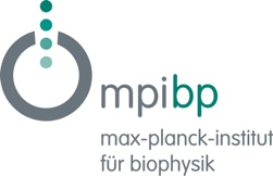 The Max Planck Institute of Biophysics
